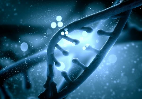Government publishes report on 'genome editing'
