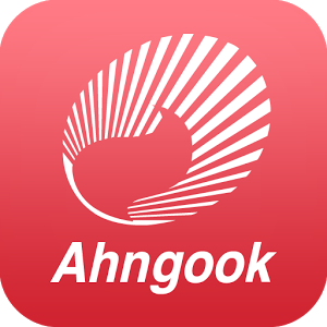 Ahngook gets state support for new drug