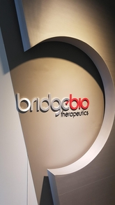 Bridge Bio to start P1 trial for ulcerative colitis candidate drug