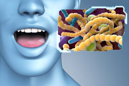 Oral care probiotics research on rise