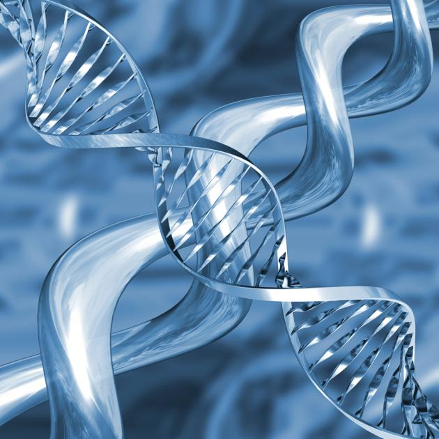 K-MASTER project analyzes over 1,000 cancer patients' genomes