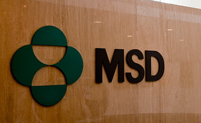 [Reporter's Notebook] 'Wanna know what's going on with MSD Korea?'