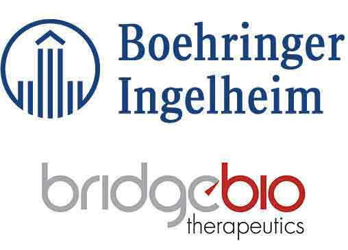 Bridge Biotherapeutics licenses out IPF treatment candidate to Boehringer