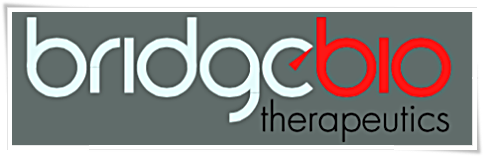 Bridge Biotherapeutics passes preliminary review for Kosdaq listing