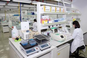 Interpark embarks on organoid business